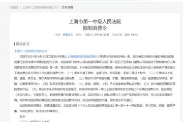 B站关联公司上海中二信息科技有限公司被限制高消费